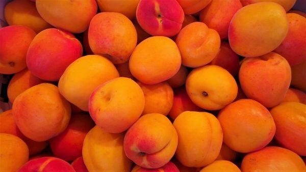 une bonne confiture c'est avant tout de bons fruits à maturité