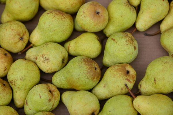 Notre compote de poires est cuisinée avec des poires à maturité cultivés dans le rhone