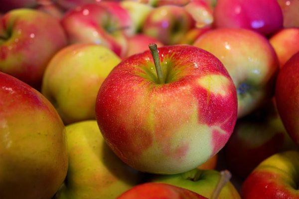 La compote de pommes issue de notre exploitation dans le rhône