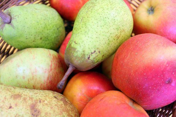 notre compote de pommes poires est fabriquée avec des fruits récoltés das le Rhône