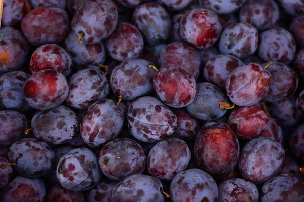 une confiture de prune locale et artisanale