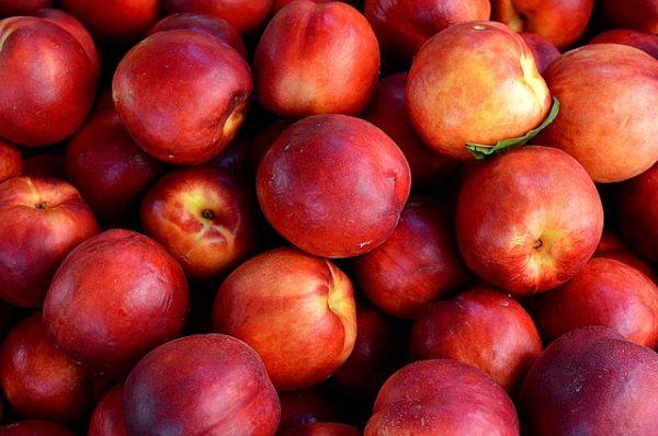 de délicieux fruits à maturités par des sorbets pleins fruits rafraichissants